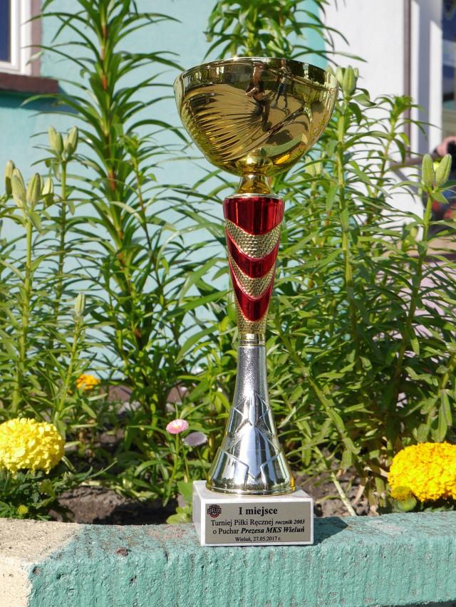 Puchar z Wielunia